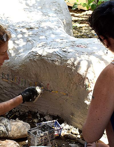 דינה ומריאנה משבצות מרקמים בבטון הלבן_800